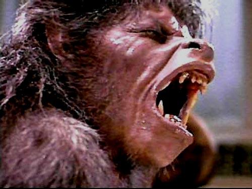 Nice werewolf - photo#11