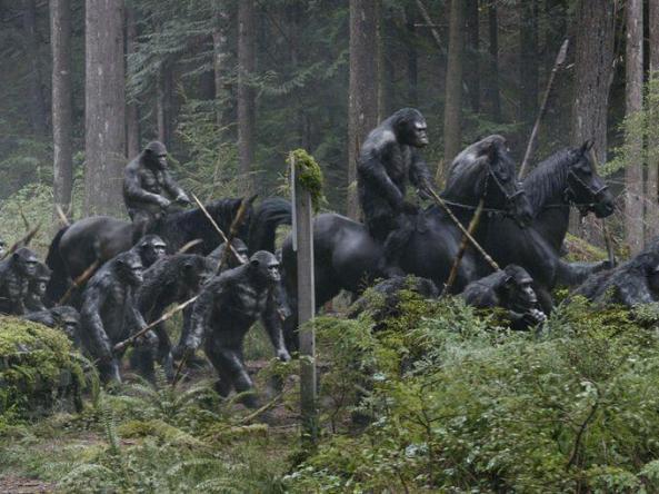 ape on horses