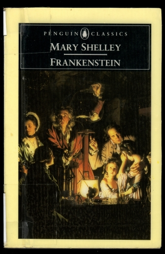 the two significant themes of mary shelleys frankenstein The education of frankenstein's monster frankenavigation home  chapter v of mary shelley's frankenstein  the project is presented in themes.