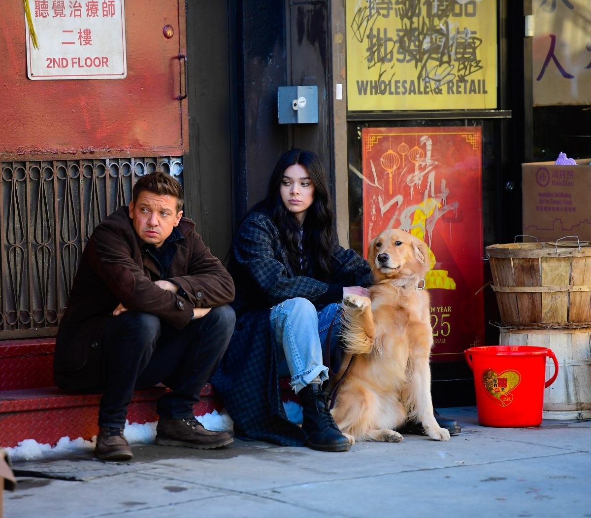 hawkeye kate bishop and pizza dog
